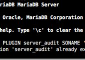 MariaDB 日志审计